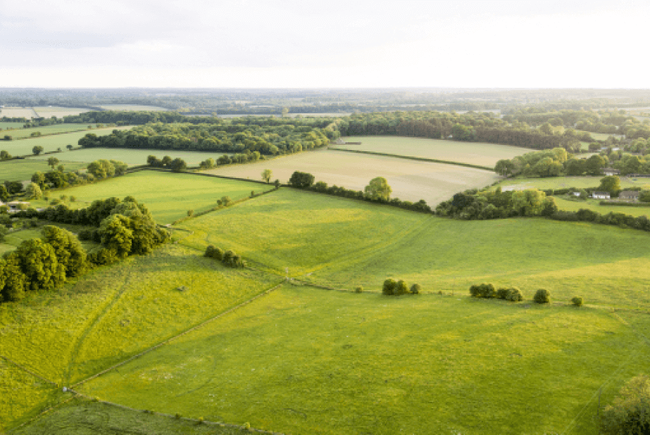 5 Reasons To Buy Land From The Land Banker?